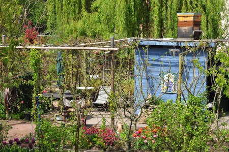 allotment: the allotment garden in spring in Verneuil sur Seine, France Stock Photo