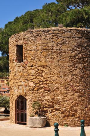 mimose: una vecchia torre a Bormes les Mimosas, Francia