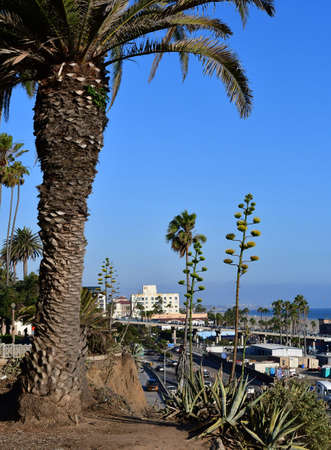 santa monica: Santa Monica, California, USA - july 15 2016 : the picturesque city in summer Editorial