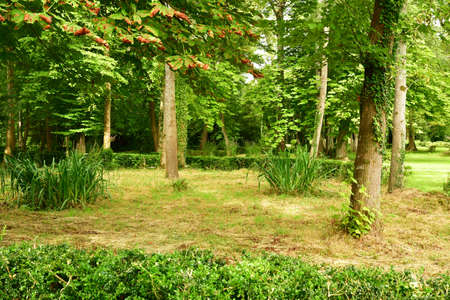chantilly: beautiful park Stock Photo
