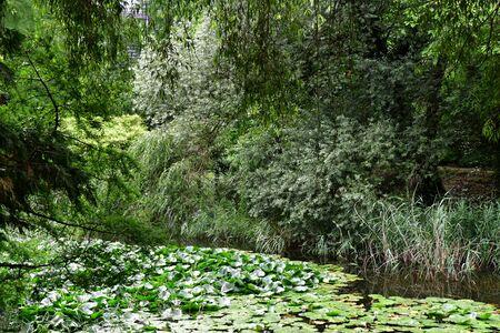 Strasbourg, France - july 24 2016 : the botanical garden of the university