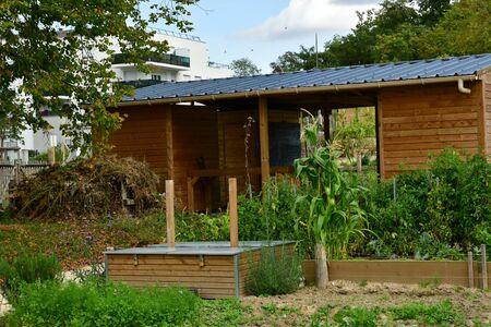 Les Mureaux; France - september 29 2017 : an allotment garden Editorial