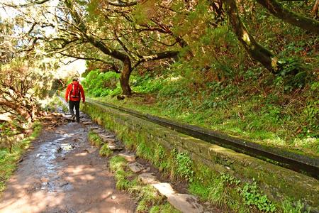 Risco; Madera; Portugalia - 24 lutego 2018: spacer lewadą po 25 fontannach