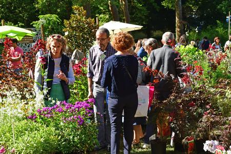 Les Mureaux; France - september 15 2018 : Fleurs en Seine, the flower exhibition and sell 写真素材 - 120376269