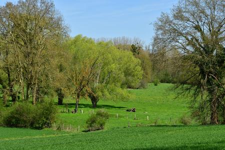Gommecourt; France - april 21 2018 : the contryside 版權商用圖片