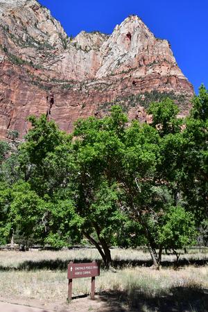 Zion park, Utah, USA - july 10  2016 : the National Park Imagens