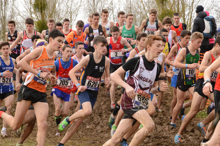 Les Mureaux; Verneuil sur Seine, France - mach 1 2015 : france championship of cross country on the leisure base