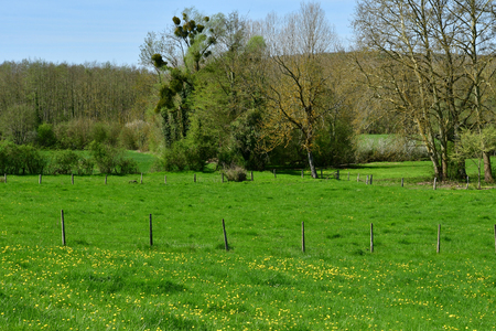Gommecourt; France - april 21 2018 : the contryside 新聞圖片