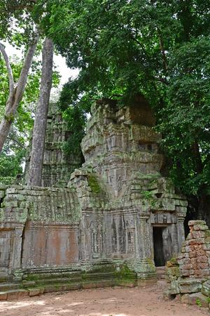 Siem Reap; Kingdom of Cambodia - august 24 2018 : the Ta Prohm temple Redakční