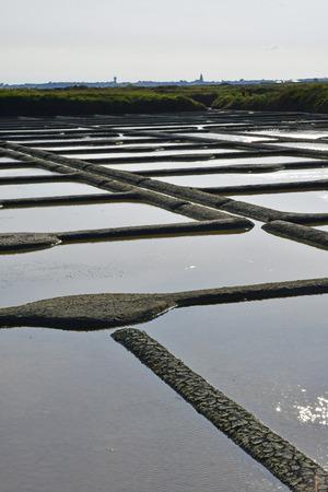 landscape of the salt marshes