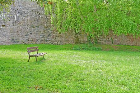 bench in a public park in the medieval city in spring