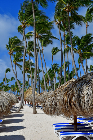 Punta Cana, Dominican Republic - june 2 2017 : beach Editorial