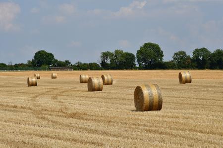 Wy dit joli village , France - july 27 2018 : bales of straw in a field