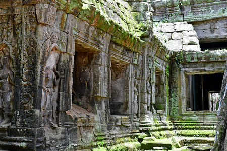 Siem Reap; Kingdom of Cambodia - august 24 2018 : the Ta Prohm temple Editorial