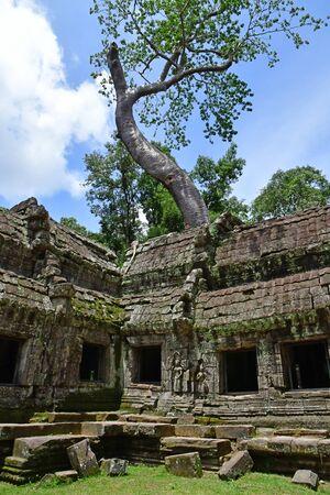 Siem Reap; Kingdom of Cambodia - august 24 2018 : the Ta Prohm temple