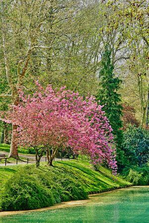 the Meissonier park in spring