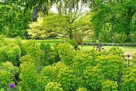 London; Kew, England - may 5 2019 : the Kew Royal Botanic Gardens