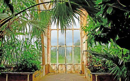 London; Kew, England - may 5 2019 : the Palm House in the Kew Royal Botanic Gardens