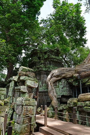 Siem Reap; Kingdom of Cambodia - august 24 2018 : the Ta Prohm temple Sajtókép