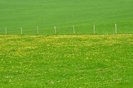 La Roche Guyon, France - april 16 2019 : landscape in spring