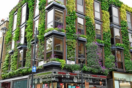 London, England -  may 3 2019 : a wall with plants in James street