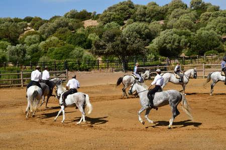 Medina Sidonia; Spain - august 28 2019 : the Acampo Abierto Banco de Imagens - 142093697