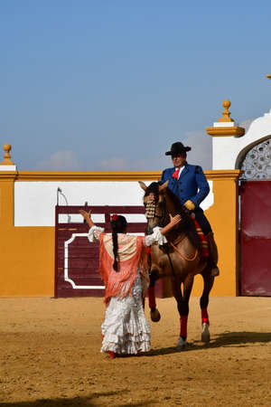Sevilla; Isla Minima, Spain - august 26 2019 : a horse show in the hacienda near the guadalquivir river Banco de Imagens - 142093864