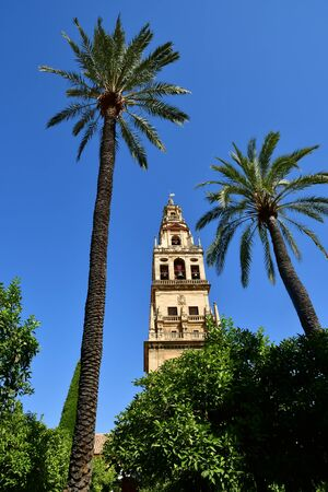 Cordoba; Spain - august 28 2019 : the Mosque Cathedral Reklamní fotografie