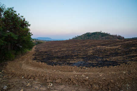 land use: The mountain was on fire for agriculture. Burning mountain to land use.