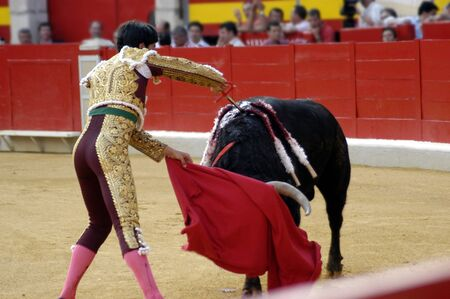 bullfighters: Running of the bulls in the bullring of Granada