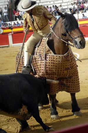 Third of bullfight cheap in bullfights photo