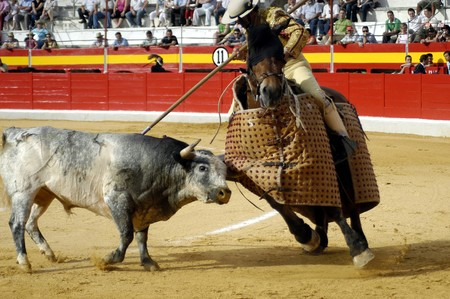 Third of bullfight cheap in bullfights