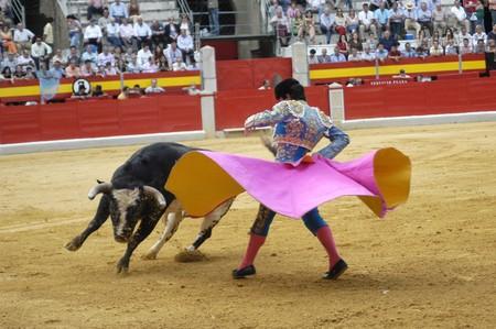 albero: Running of the Bulls Stock Photo