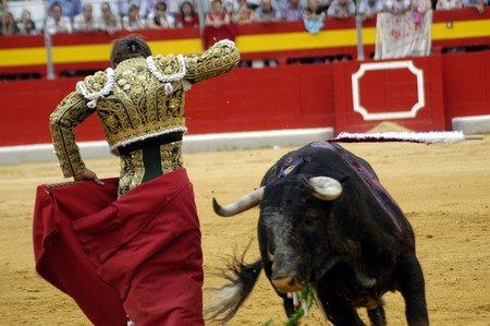Running of the Bulls Stock Photo