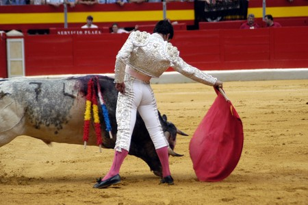 grapple: Running of the Bulls Stock Photo