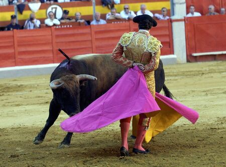 bullfighters: Running of the Bulls Stock Photo
