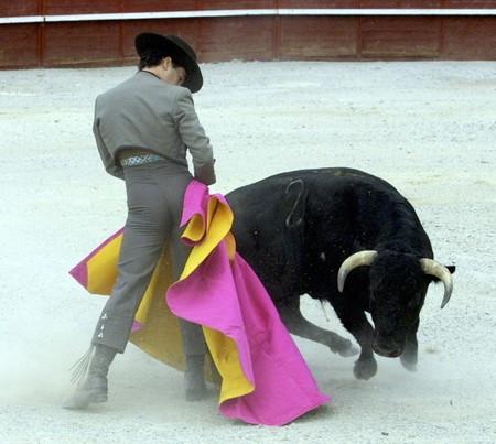 bull fighting: Running of the Bulls Stock Photo
