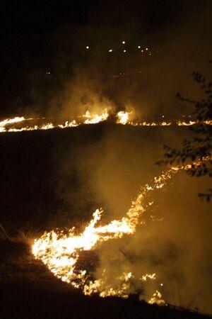 forest fire: Los incendios forestales en la noche