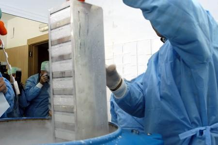 Stem cell bank