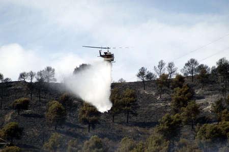 forest fire: Helic�pteros contratados en la extinci�n de un incendio forestal