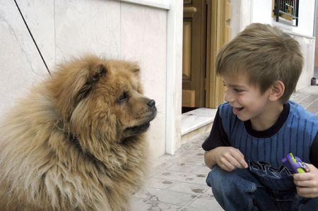 Niño con perro de raza chow-chow