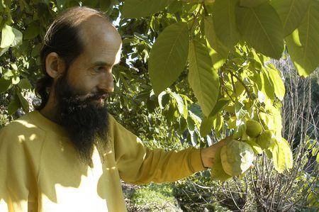 Organic Farming photo