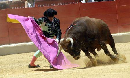 matadors: Bullfighting