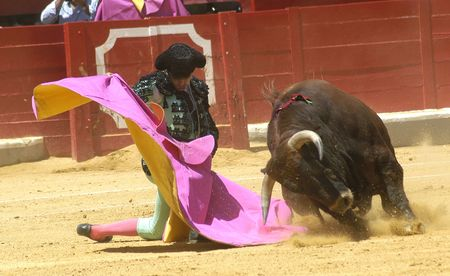 bull rings: Bullfighting