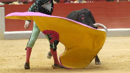 bullfighters: Bullfighting