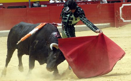 matadors: Bullfighting
