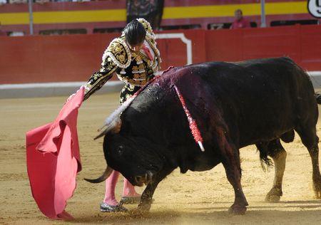 matador: Stierenvechten  Stockfoto
