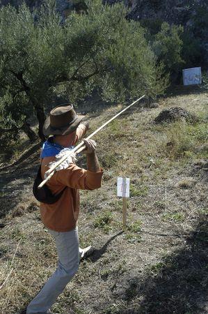 propellant: Shooting Championship propellant prehistoric spear Stock Photo
