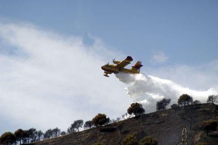 extinction: Extinction of a forest fire in Spain