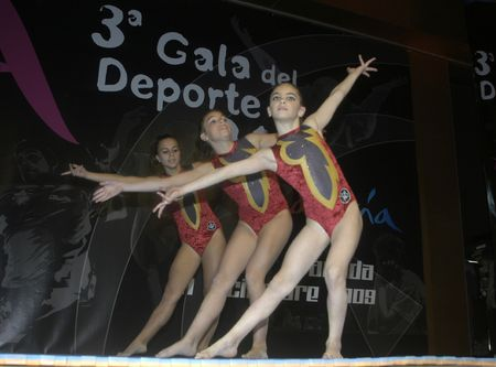 Gymnasts making a display of acrobatic gymnastics at the Gala of Andalusia based sport, with the Minister of Sports and Tourism of Andalusia, in the Palacio de Congresos de Granada 10/12/2009 Stock Photo - 6896534